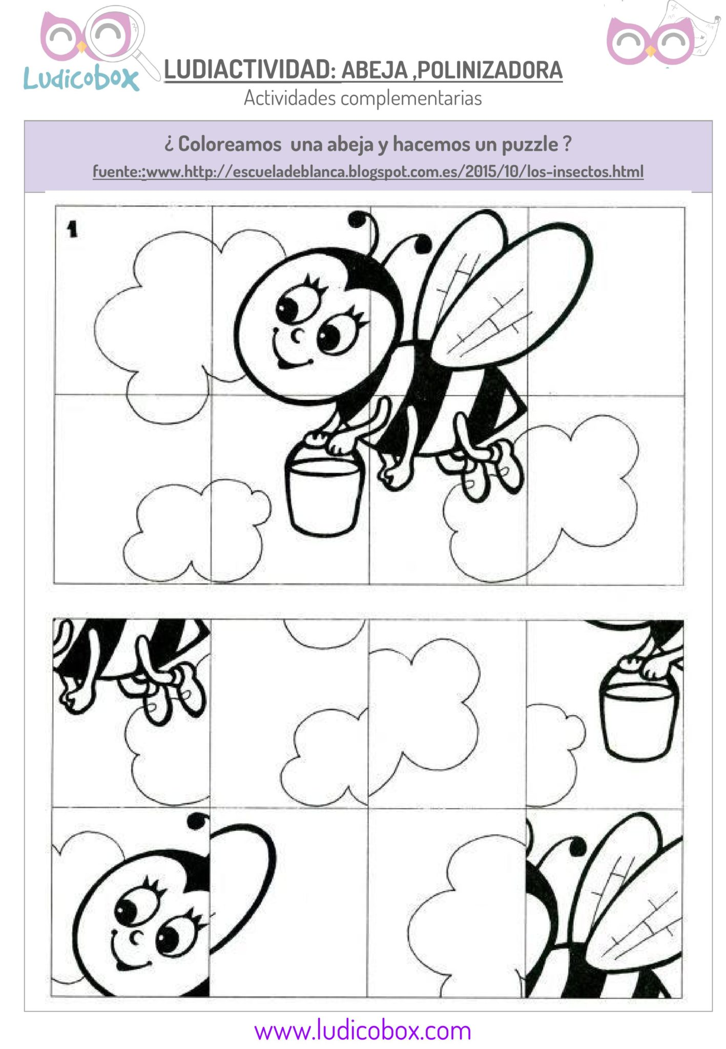 polinizacion de las abejas actividades para niños