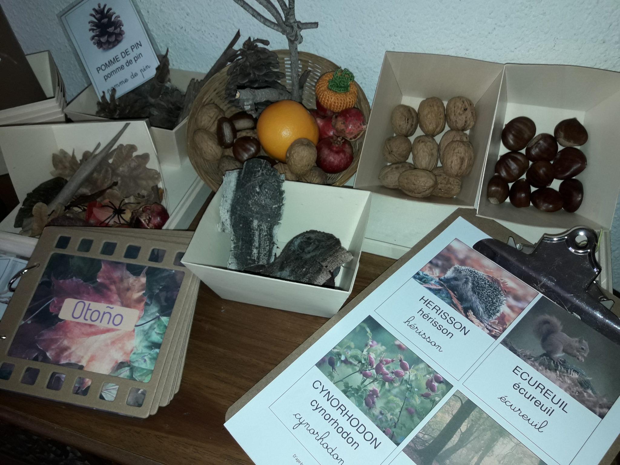 mesa de observación Montessori de otoño