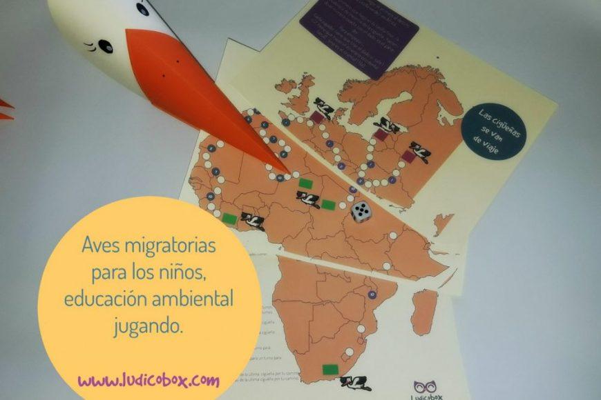 Aves migratorias para los niños,educación ambiental jugando.