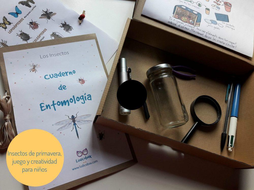 Insectos de primavera, juego y creatividad para niños