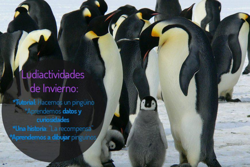 Actividades con temática pingüinos.Frío y creatividad. | Ludicobox