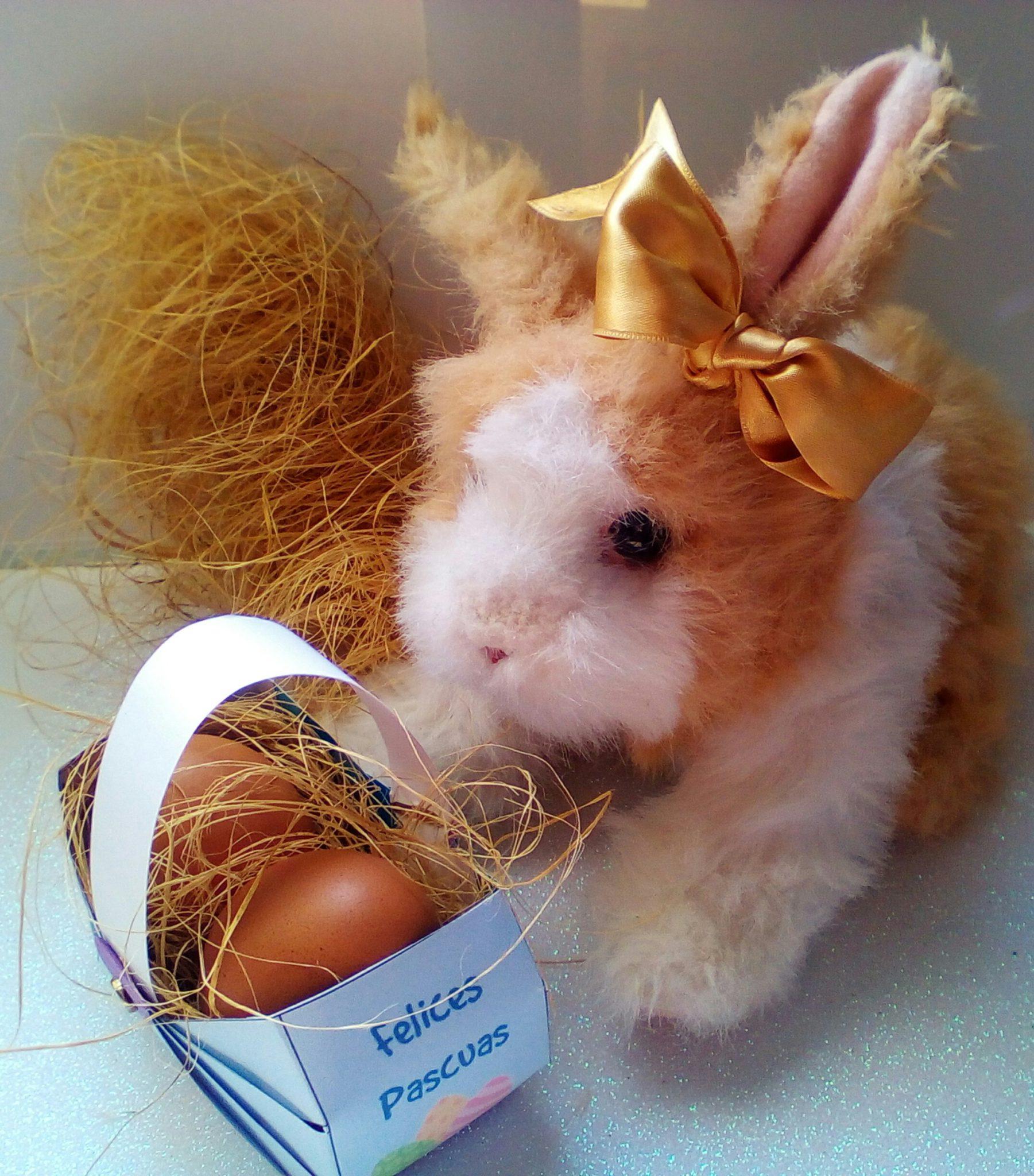 Ideas para manualidades de Pascuas fáciles