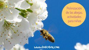 polinización de las abejas, actividades para niños